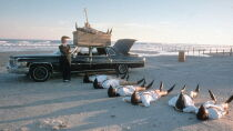 Leningrad Cowboys Go America Watch Free