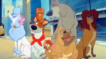 Oliver & Company Watch Free